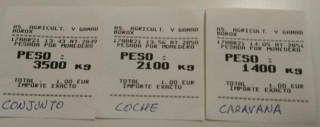 Pesos.jpeg